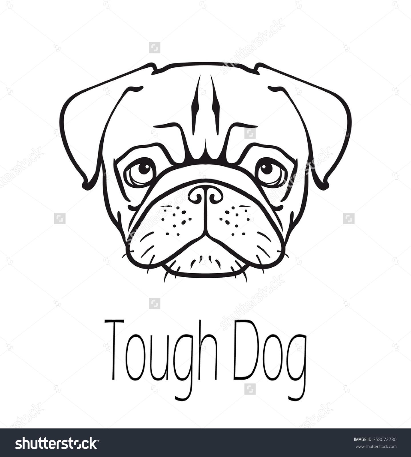 Pug Face Diagram - Block And Schematic Diagrams •