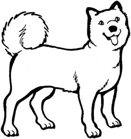 453x479 Dog Black And White Clipart Dog Black And White Black And White