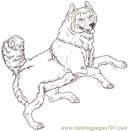 Dogsled Drawing