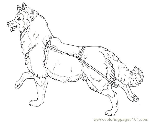 Mural Tsb Sled Dog Running Head Up Coloring Page - Free Dog ... | 478x582