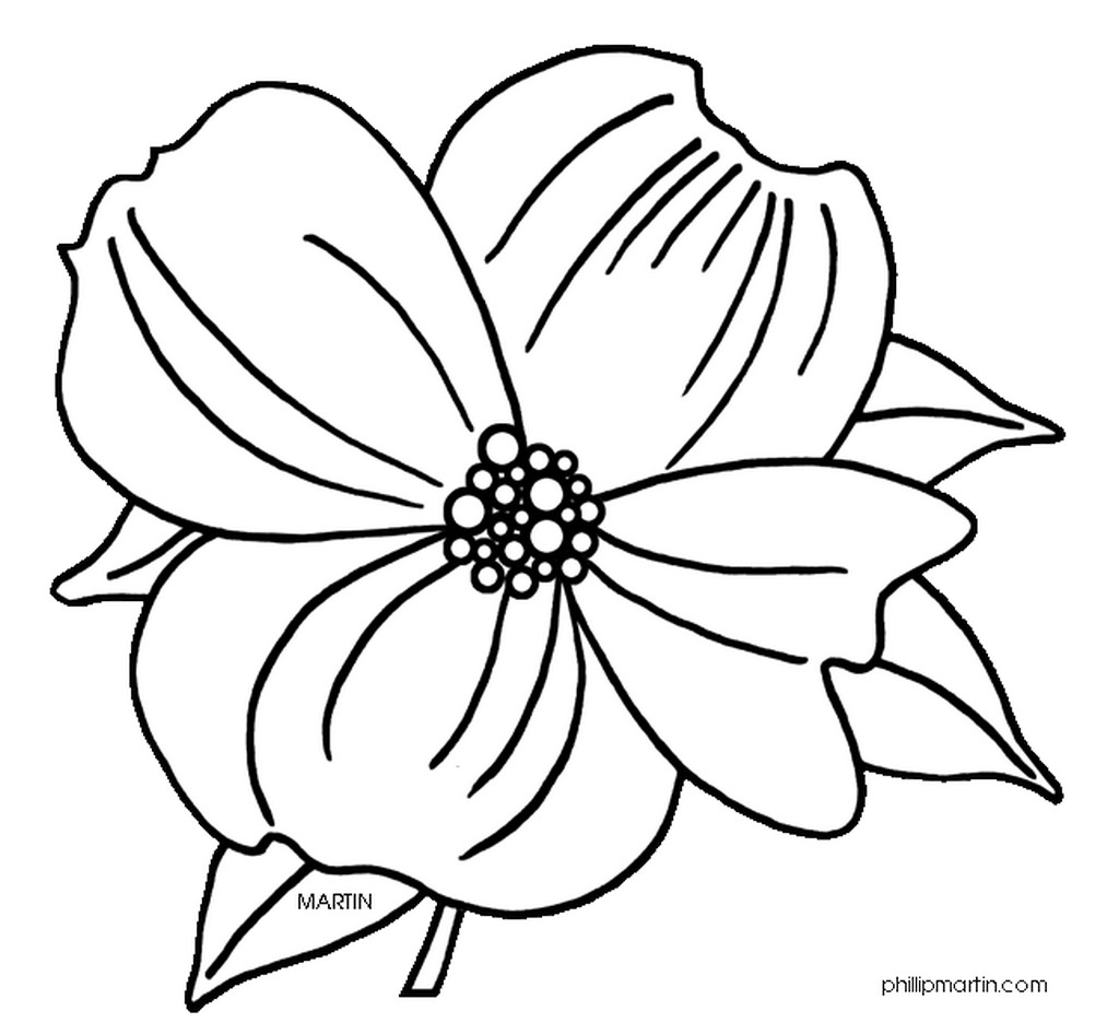 1024x936 Flowering Dogwood Tree Coloring Page