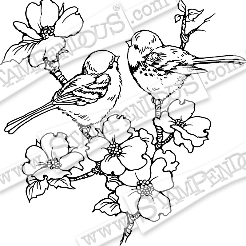 800x800 Dogwood Birds Rubber Stamp