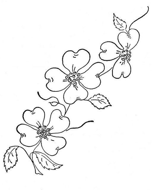 512x640 Dogwood Blossom Clipart