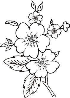 236x328 Simple Flower Coloring Page