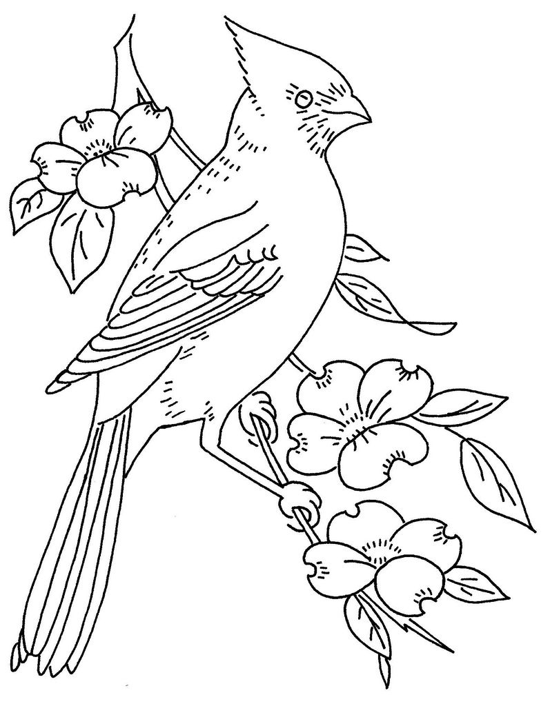 810x1024 Bird And Dogwood Bird, Embroidery And Wood Burning