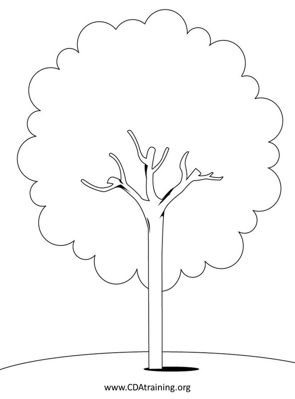 Dogwood Flower Line Drawing : Dogwood drawing at getdrawings free for personal use