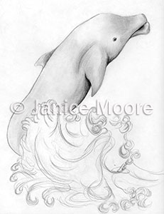 231x300 Dolphin Dancing The Ocean Waves Drawing