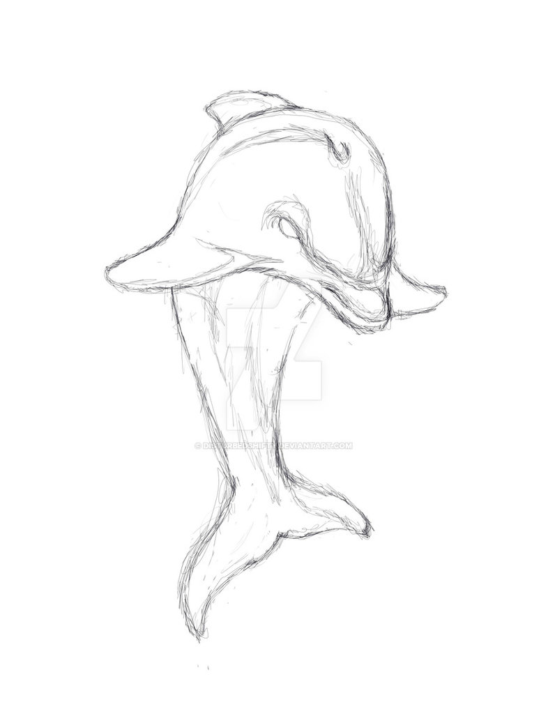 786x1017 Dolphins Concept Sketch By Disturbedshifty