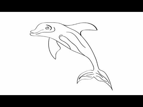 480x360 Drawing For Kids How To Draw Dolphin Fish Drawing Learn