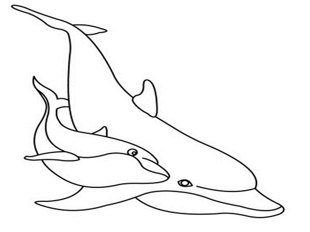 1024x768 Coloring Pages Cool Coloring Pages Draw A Dolphin Coloring Pages