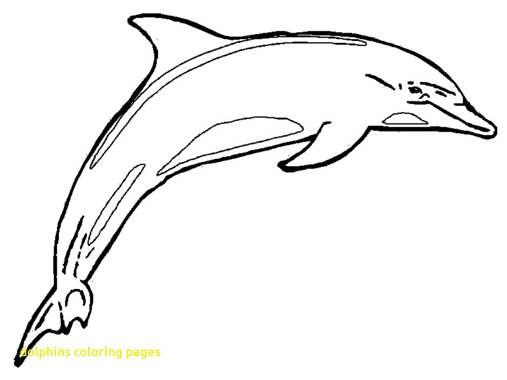 Dolphin Drawing For Kids at GetDrawings.com | Free for personal use ...