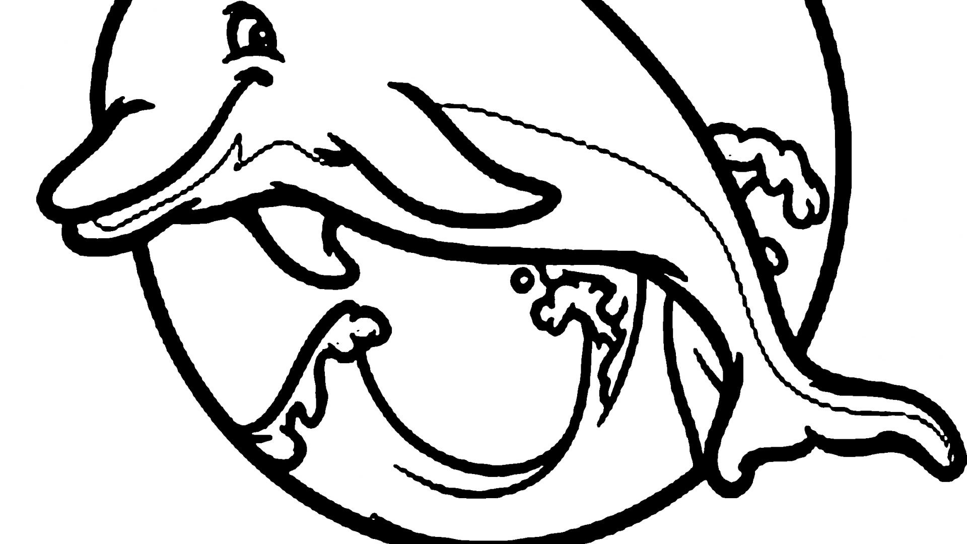 1920x1080 Popular Dolphin Coloring Pages Cool Gallery Printable For Kids