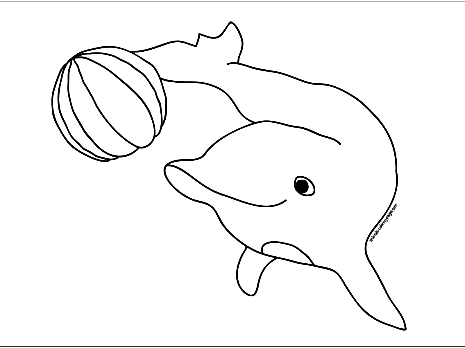 1600x1200 Two Dolphins Sea Animals Coloring Pages For Kids Elegant How