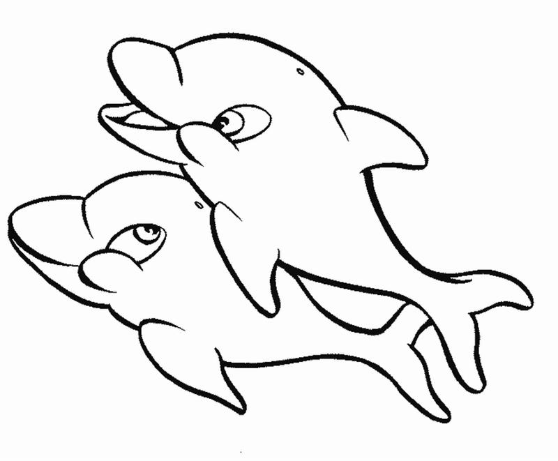 800x661 Baby Dolphin Coloring Pages For Kids Printable Printable