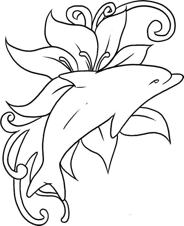 600x736 Drawn Dolphins Coloring Page