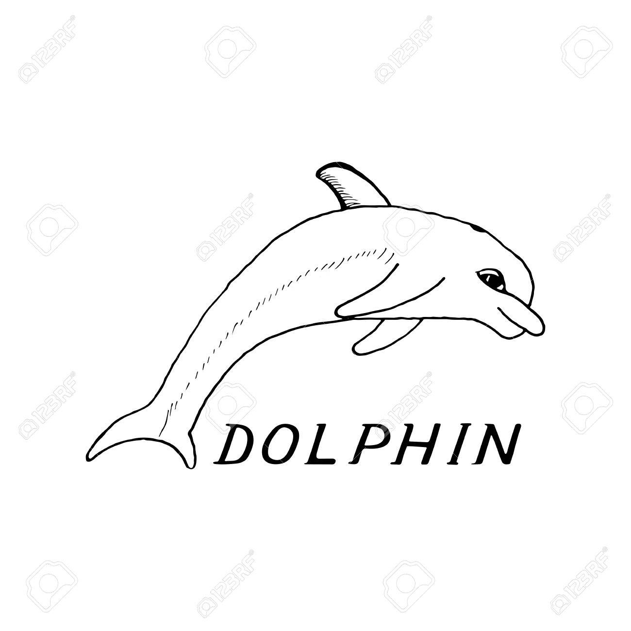 1300x1300 Hand Draw A Sketch In The Style Of A Dolphin On A White Background