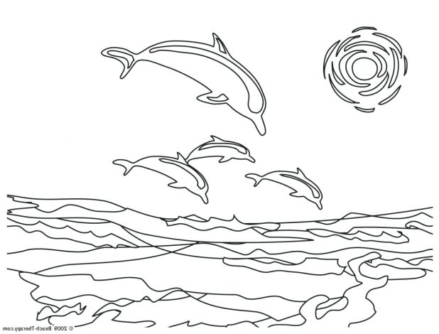 618x470 Simple Dolphin Drawing Free Printable Coloring Pages Outline Amp
