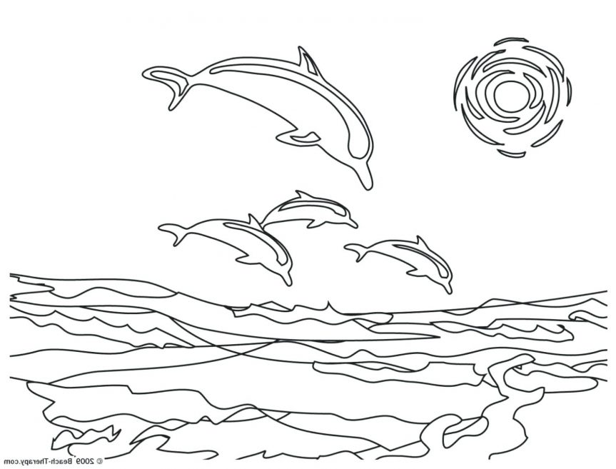 863x657 Cartoon Drawing Dolphin Art Library Miami Pictures Color Dolphins