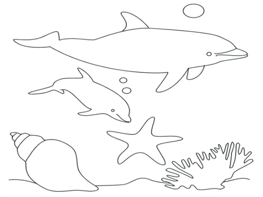 1024x767 Dolphin Coloring Book And Dolphin Coloring Page Adult Coloring