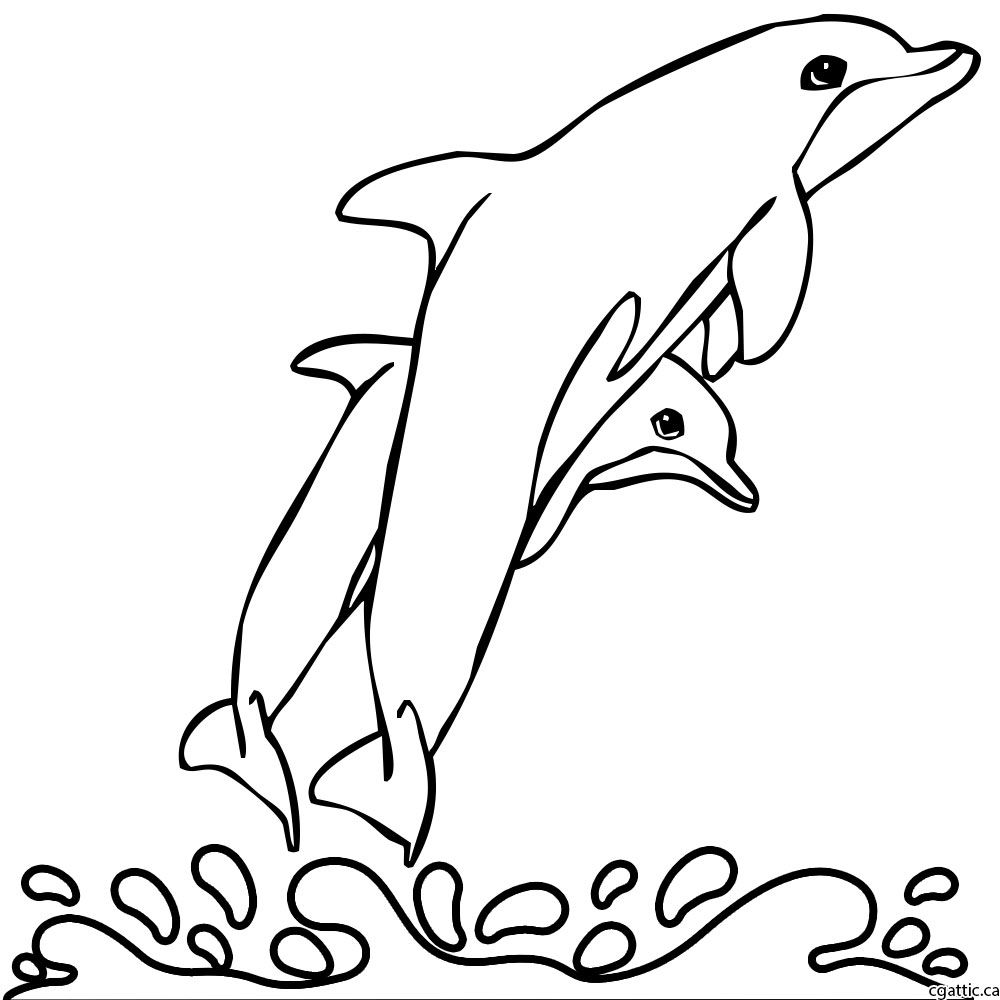 1000x1000 Cartoon Dolphin Drawing In 4 Steps With Photoshop Drawing Step