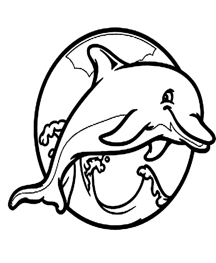 Dolphin Line Drawing at GetDrawingscom Free for personal use