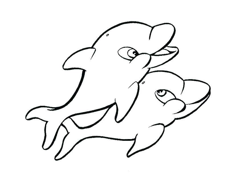 800x661 cute dolphin coloring pages winter the dolphin coloring pages