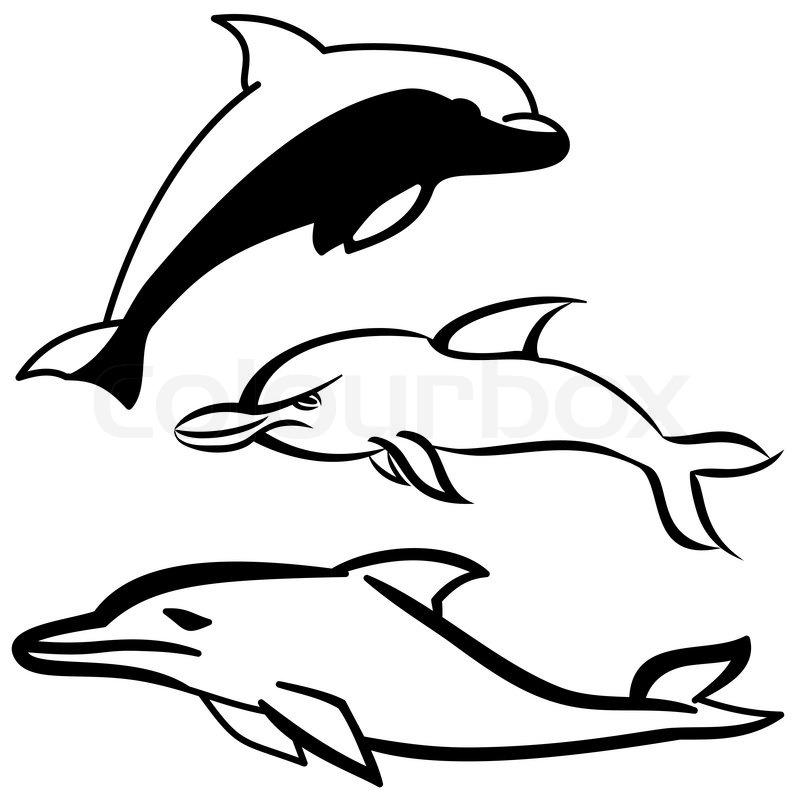 800x800 Simple Black And White Dolphin Cartoon Icon Stock Vector Colourbox