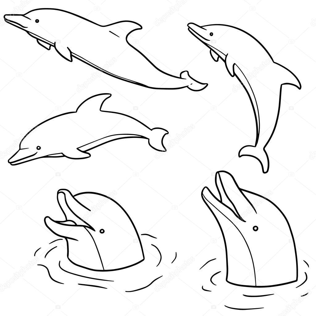 1024x1024 Vector Set Of Dolphin Stock Vector Ourlifelooklikeballoon