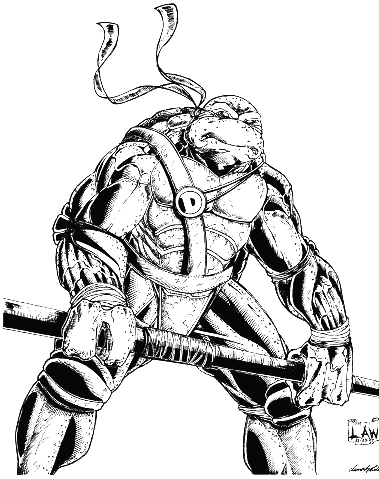 758x958 Donatello Ninja Turtle Sketch By Spiderlaw