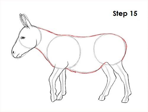 500x380 Rezultat Imagine Pentru How To Draw Donkey Desene