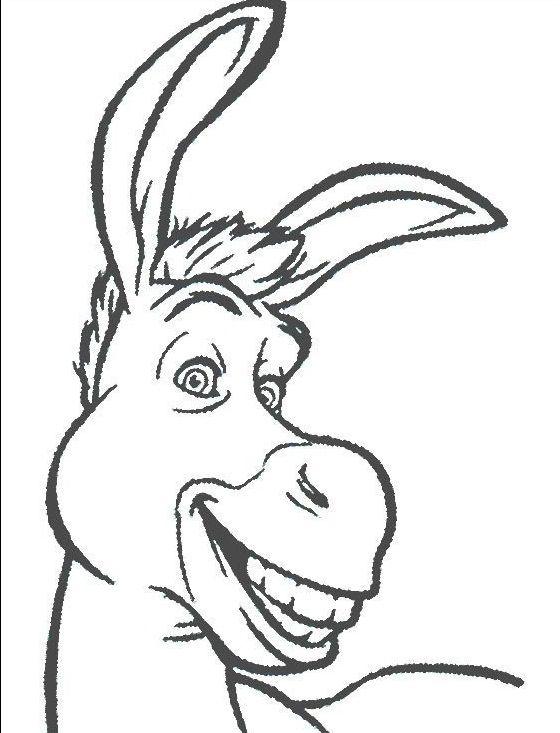 Donkey Face Drawing