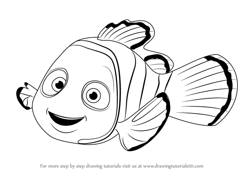 800x566 Learn How To Draw Nemo From Finding Nemo (Finding Nemo) Step By