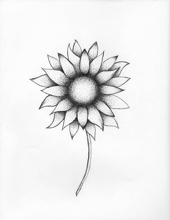 570x738 Sunflower Dot Art