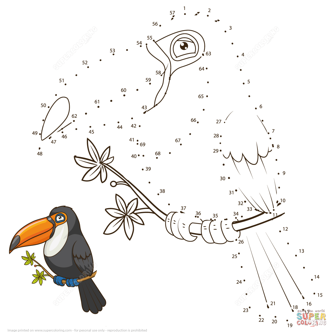 1300x1300 Toucan dot to dot Free Printable Coloring Pages
