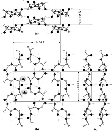 360x418 Packing Structures Of Poly (L (Ortep24 Drawing). Dotted