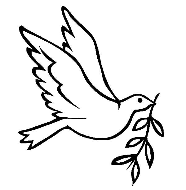 dove cartoon drawing at getdrawings com