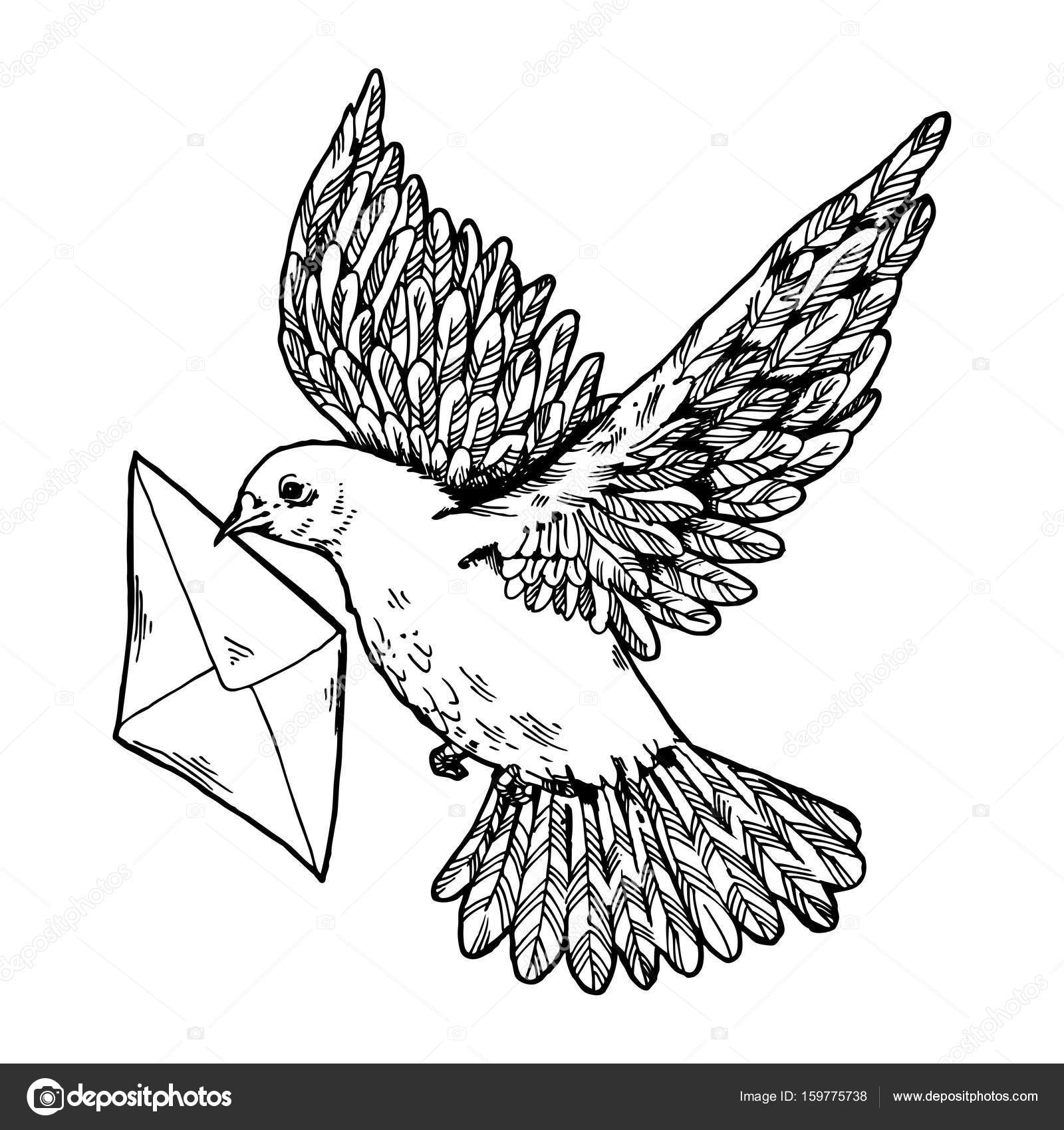 1600x1700 Postal Dove With Letter Engraving Style Vector Stock Vector