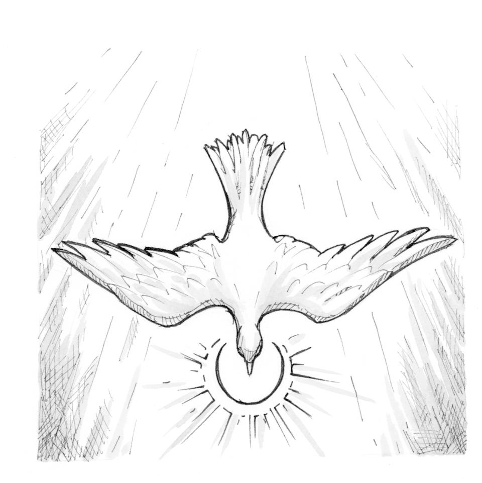 960x961 Signs And Symbols Dove Saint Mary's Press
