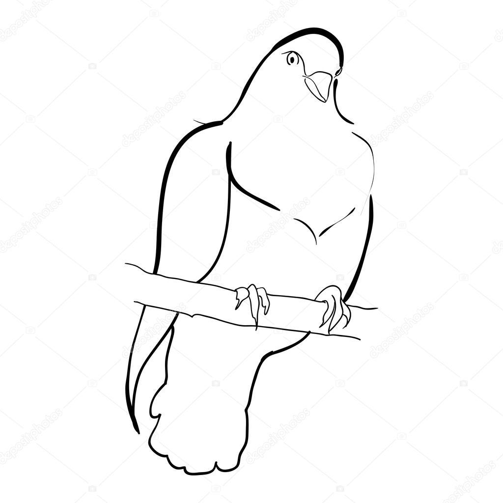 1024x1024 Dove On Branch Sketch Doodle Stock Vector Zsmart
