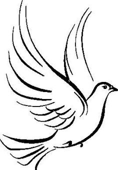 236x340 How To Draw A Dove Bird Drawings To Paint On Canvas Dove