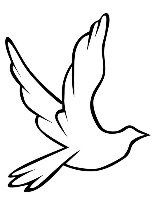 531x750 Coloring Page Dove