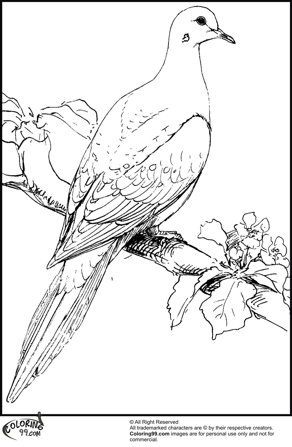 980x1500 Dove Coloring Pages Minister Coloring