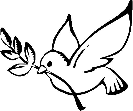 555x463 Dove Peace Black White Line Art Christmas Xmas Peace On Earth