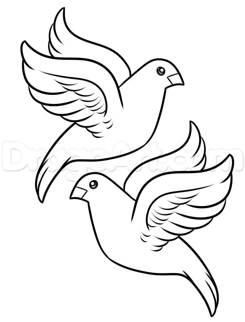 Dove Drawing at GetDrawings com | Free for personal use Dove
