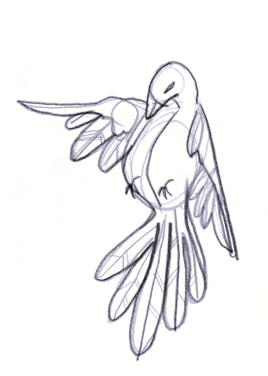 545x763 Dove. Drawing By Consti Like How The Dove Is Posed But Would Love