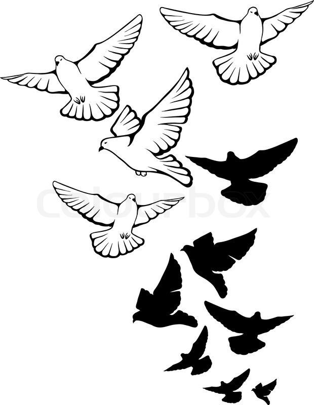 Dove Drawing Outline at GetDrawings.com | Free for personal use Dove ...