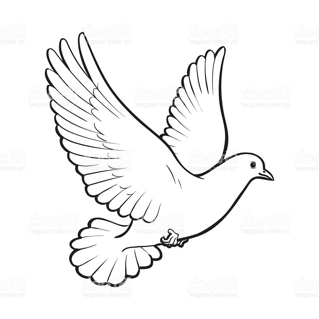 Line Drawing Dove : Dove in flight drawing at getdrawings free for
