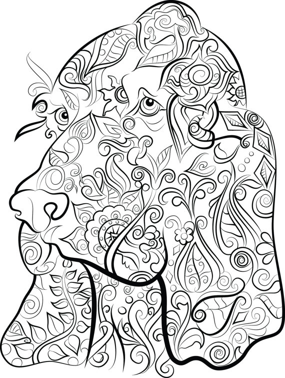 570x755 40 Colouring Pages Digital Download 1 PDF Print Amp Color Dog