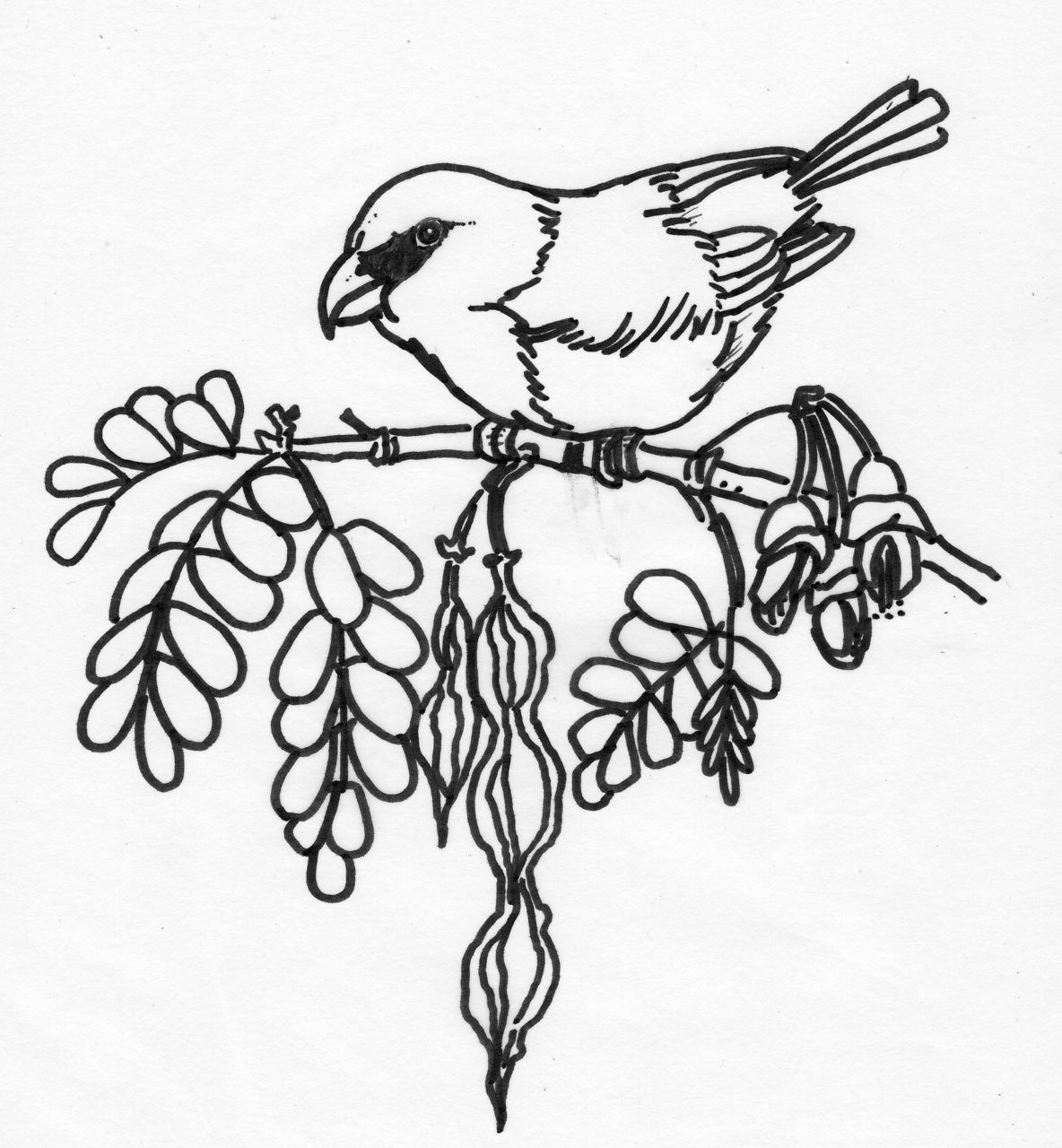 1184x1280 Nature Drawings For Kids Coloring Page For Kids Kids Coloring