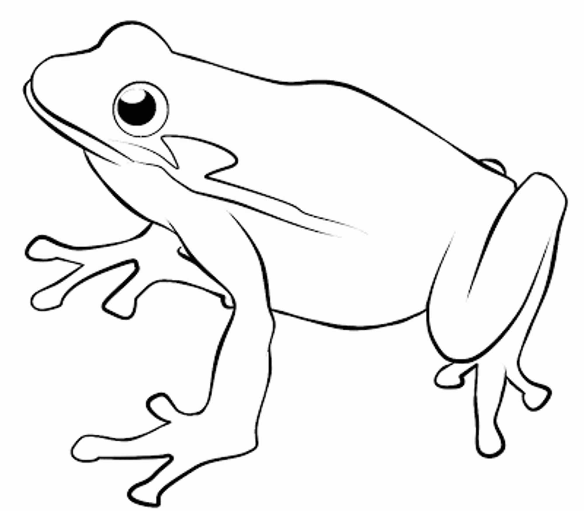 2000x1750 Coloring Pages Luxury Frog Drawing For Kids